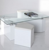 Botlek White Coffee Table