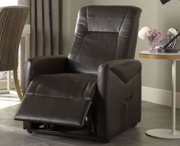 Lisbeth Brown Faux Leather Rise and Recliner