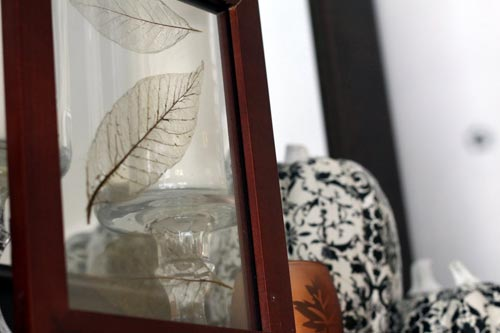 Leaf Skeleton Photo Frame