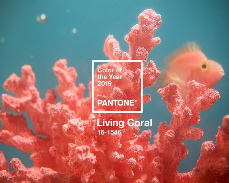 Pantone 2019 Color of the Year is Living Coral